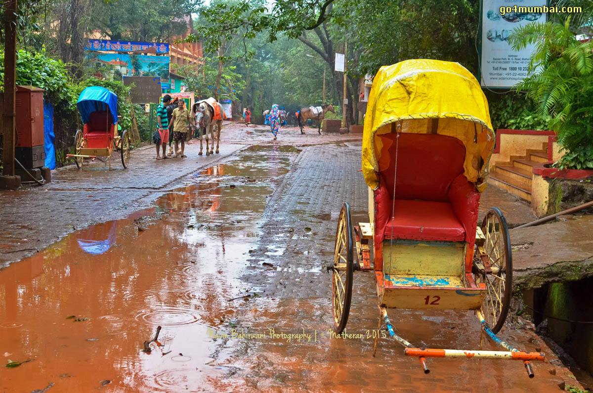 Matheran Horse cart and monsoon water on Road